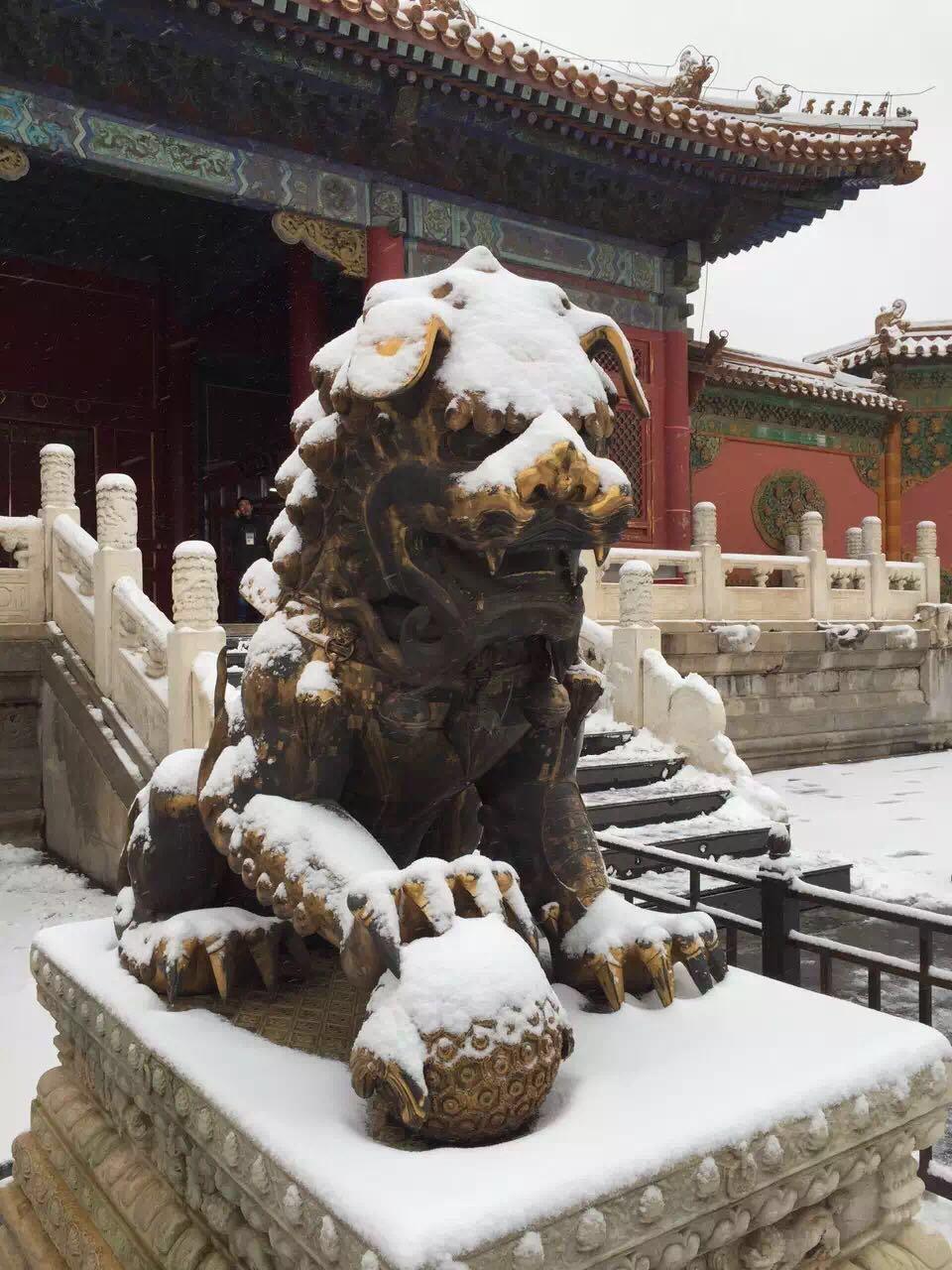 Forbidden City Private Tour