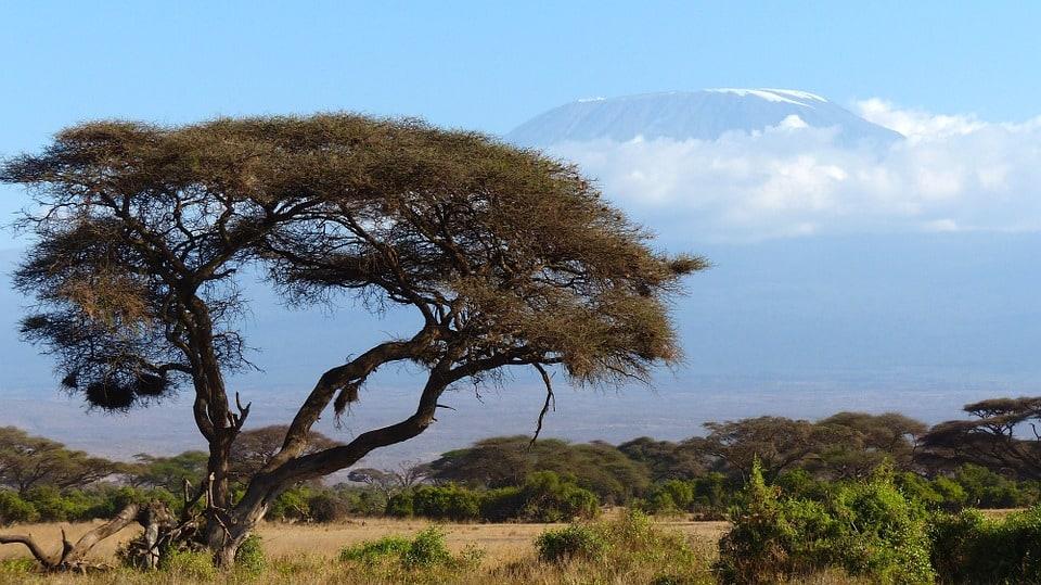 View of Mount Kilimanjaro from Amboseli