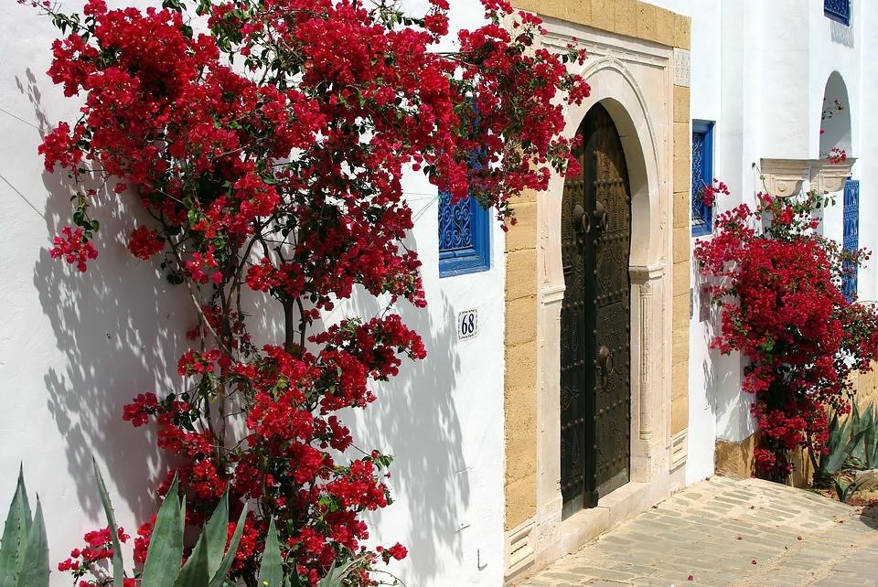 The city of Sidi Bou Said