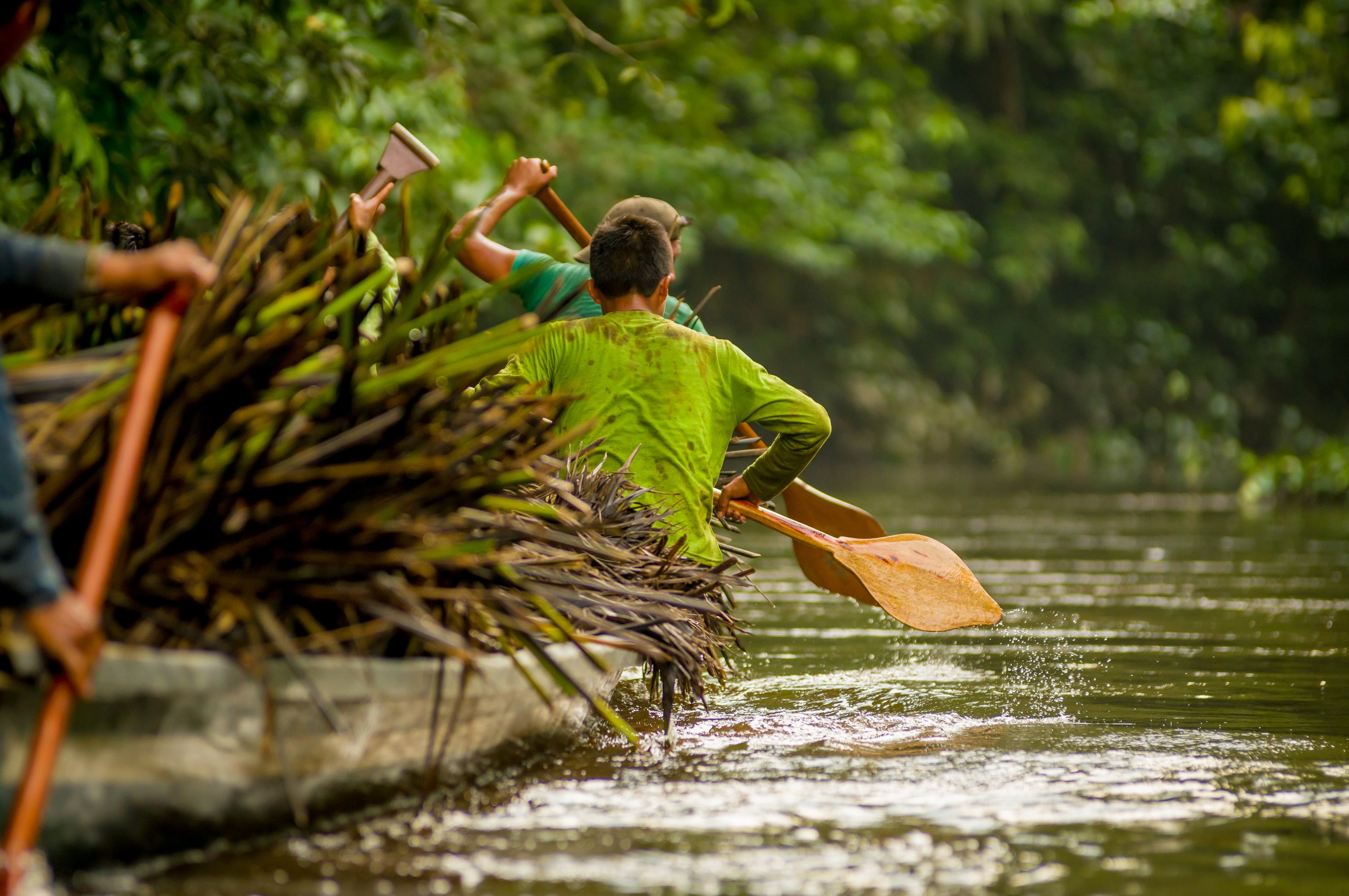 Canoeing through the Amazon River in Brazil