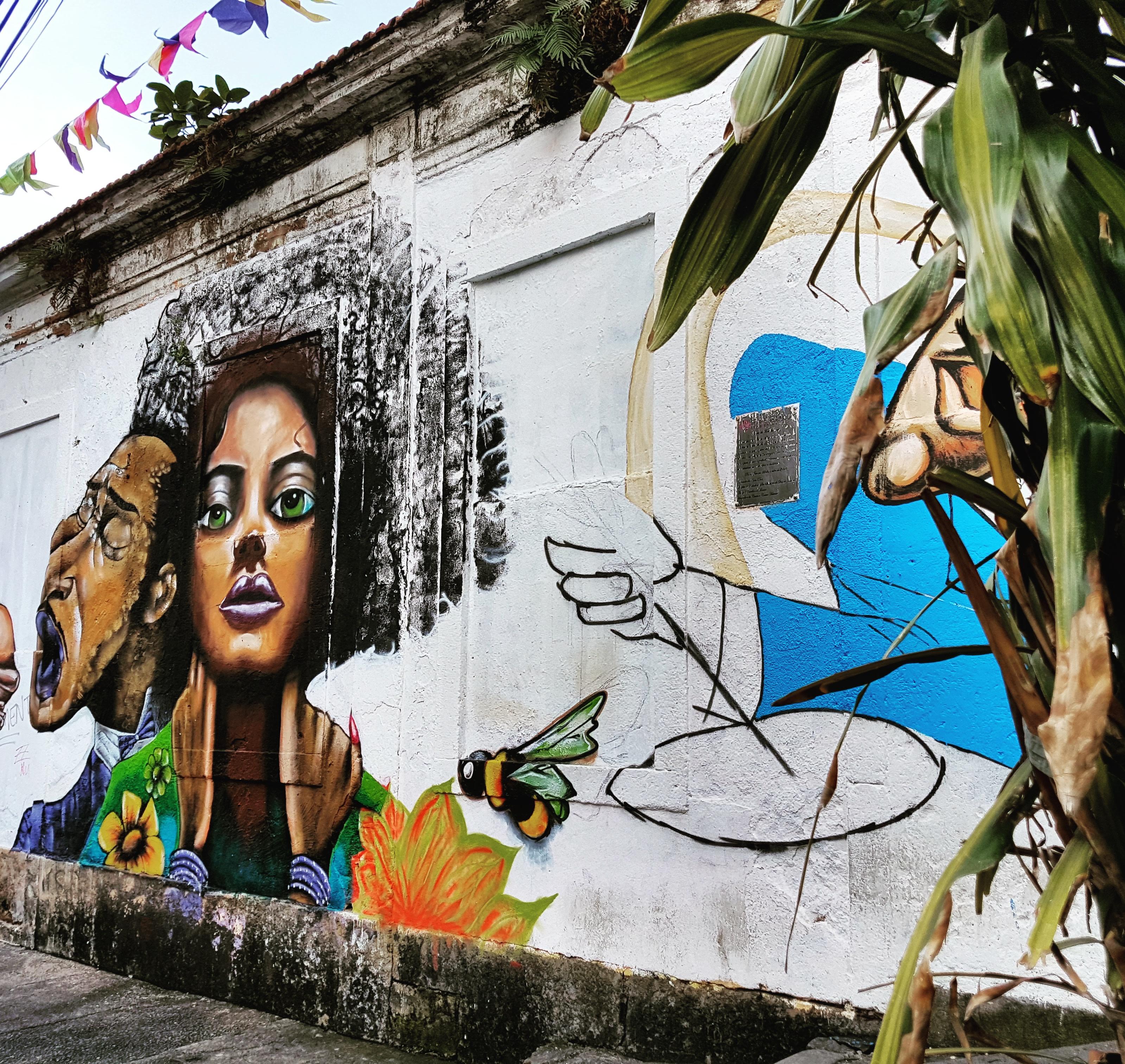 Graffities Around The Santa Teresa Neighborhood