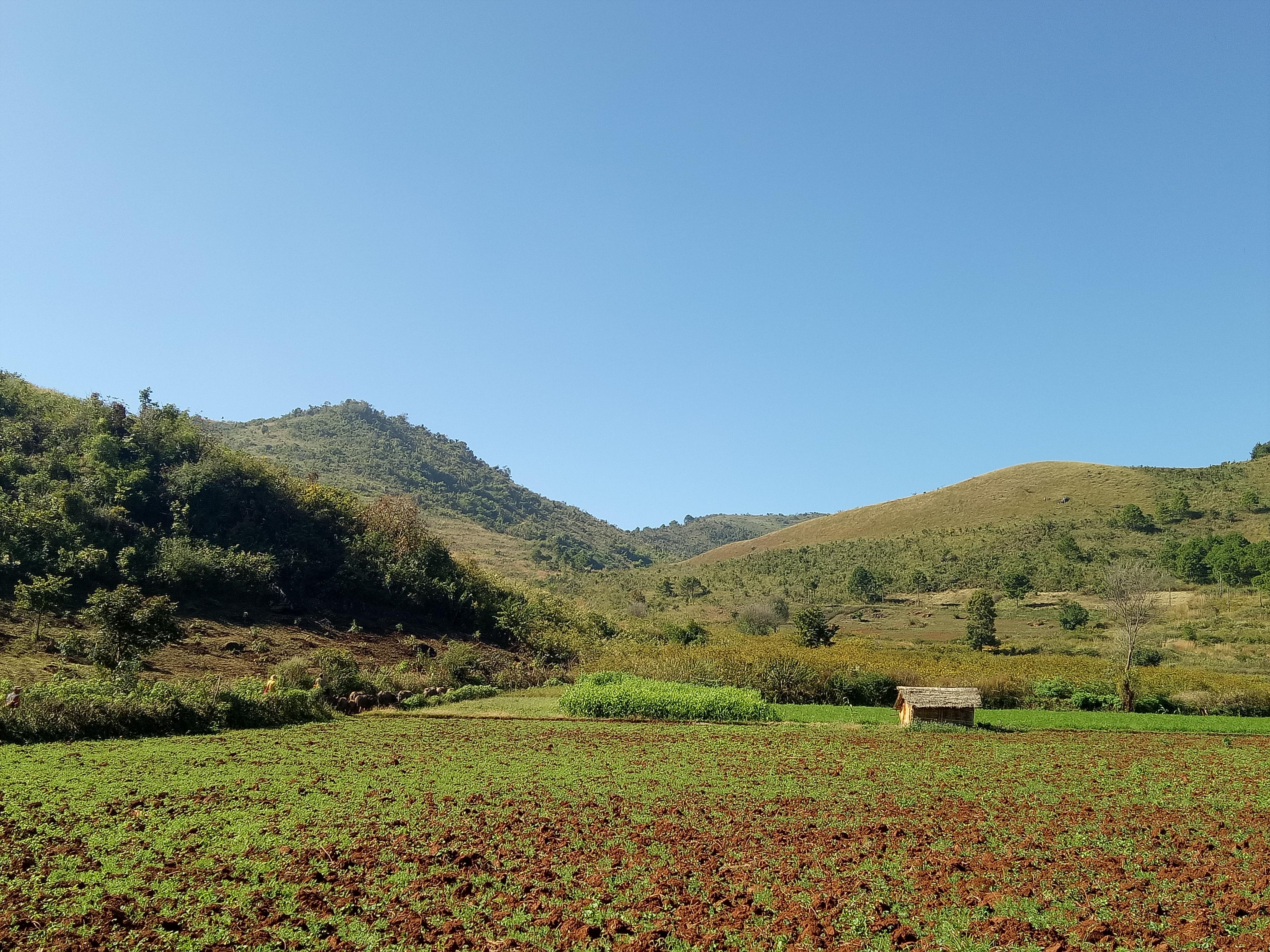 Luscious Green Valley at Kalaw