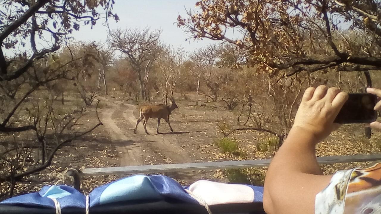Jeep Safari in Banjul