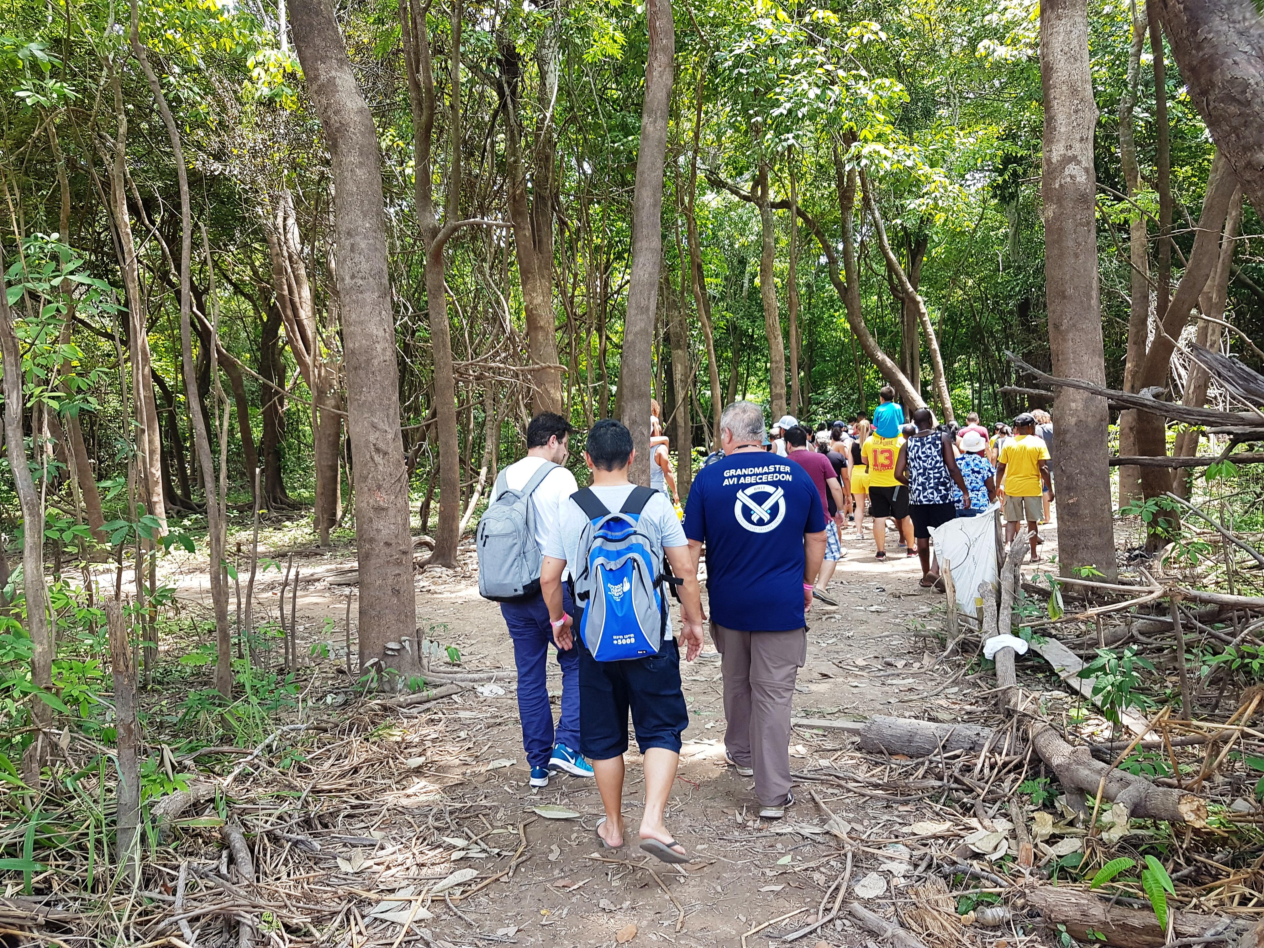 Tourists Walking Through the Amazon Forest