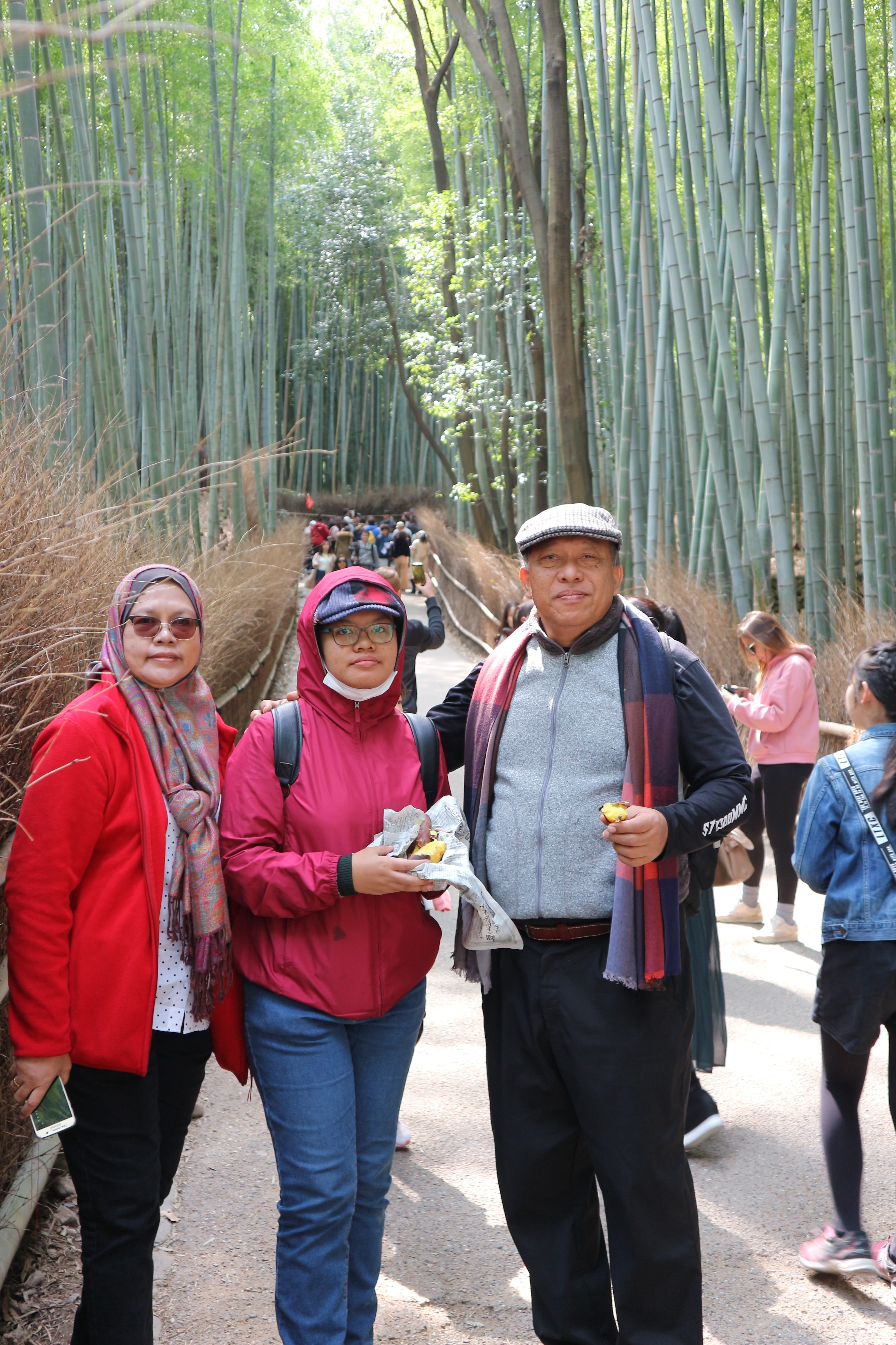 Arashiyama - Sagano Bamboo Groves (1 of 2)