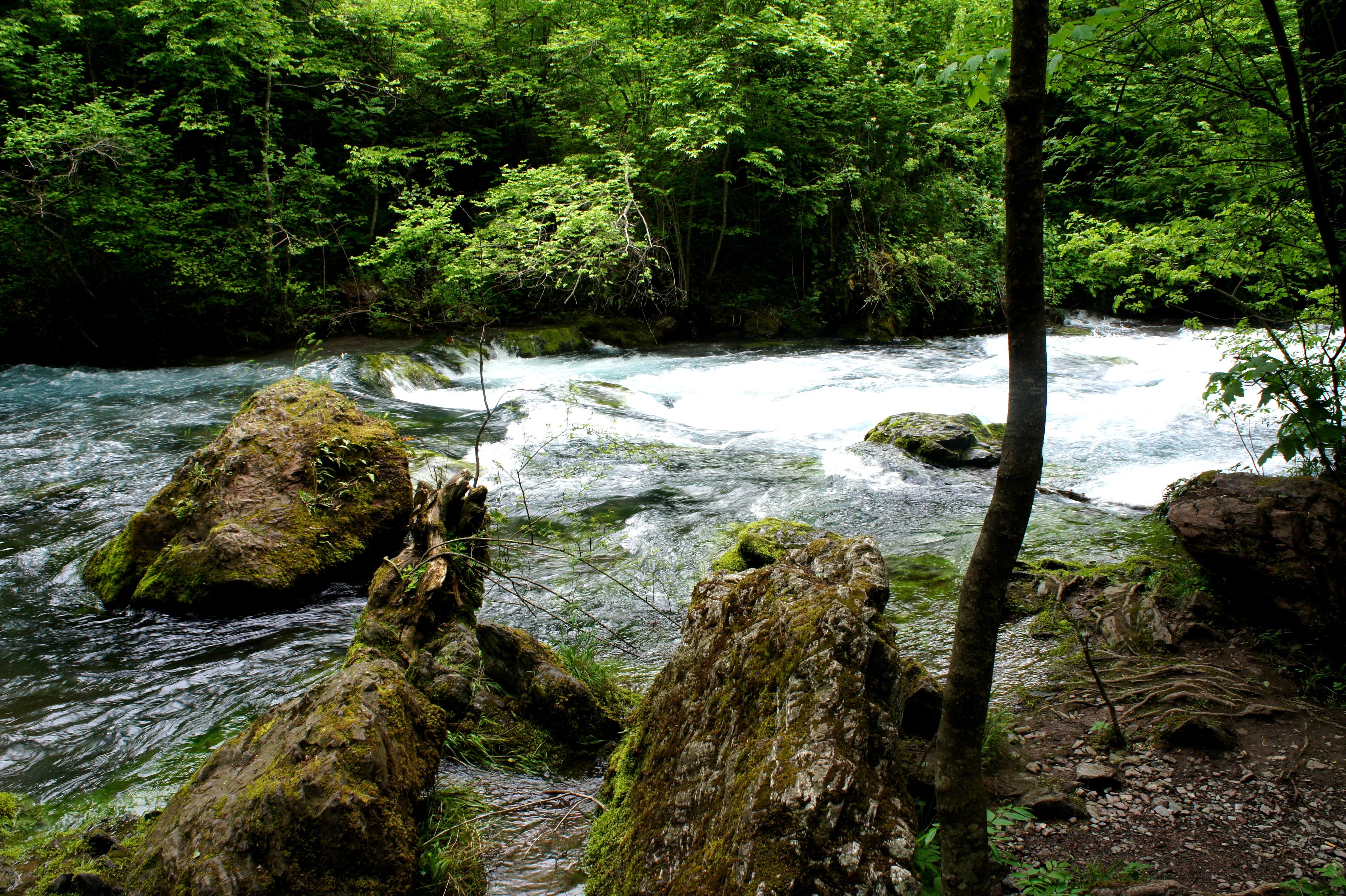 Natural landscape around White Drin Waterfall