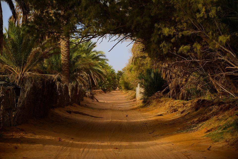 Walk Through Scenic Roads in Tatouine