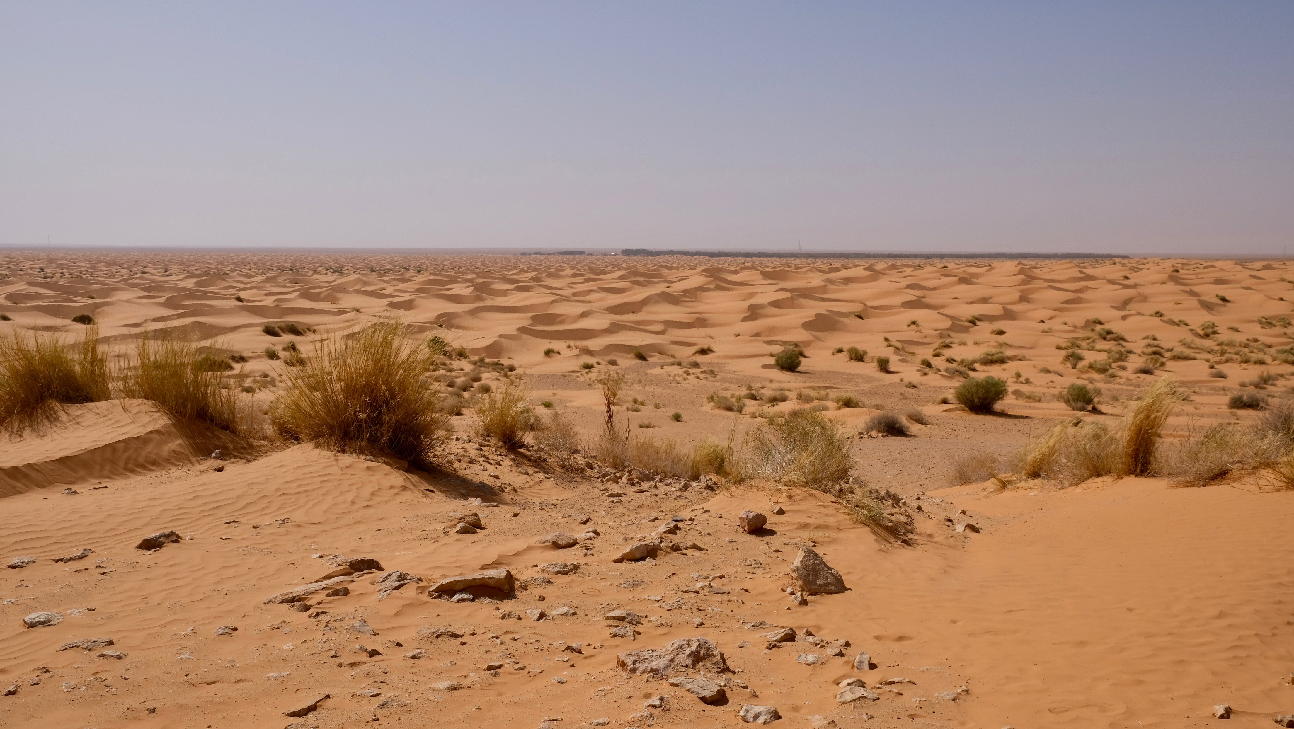 See the Sand Dunes in Ksar Ghilane