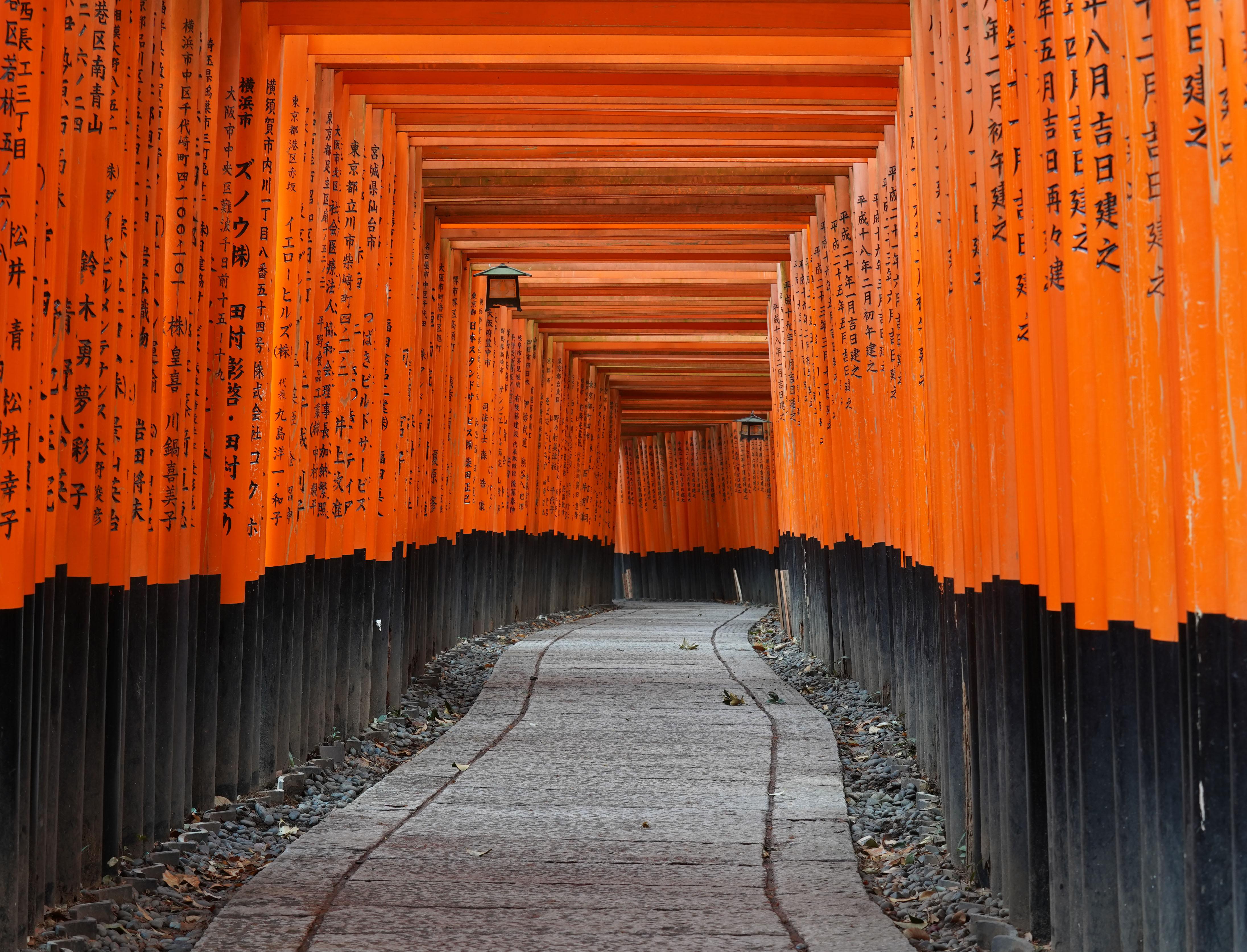 Marvel at the Fushimi Inari-taisha