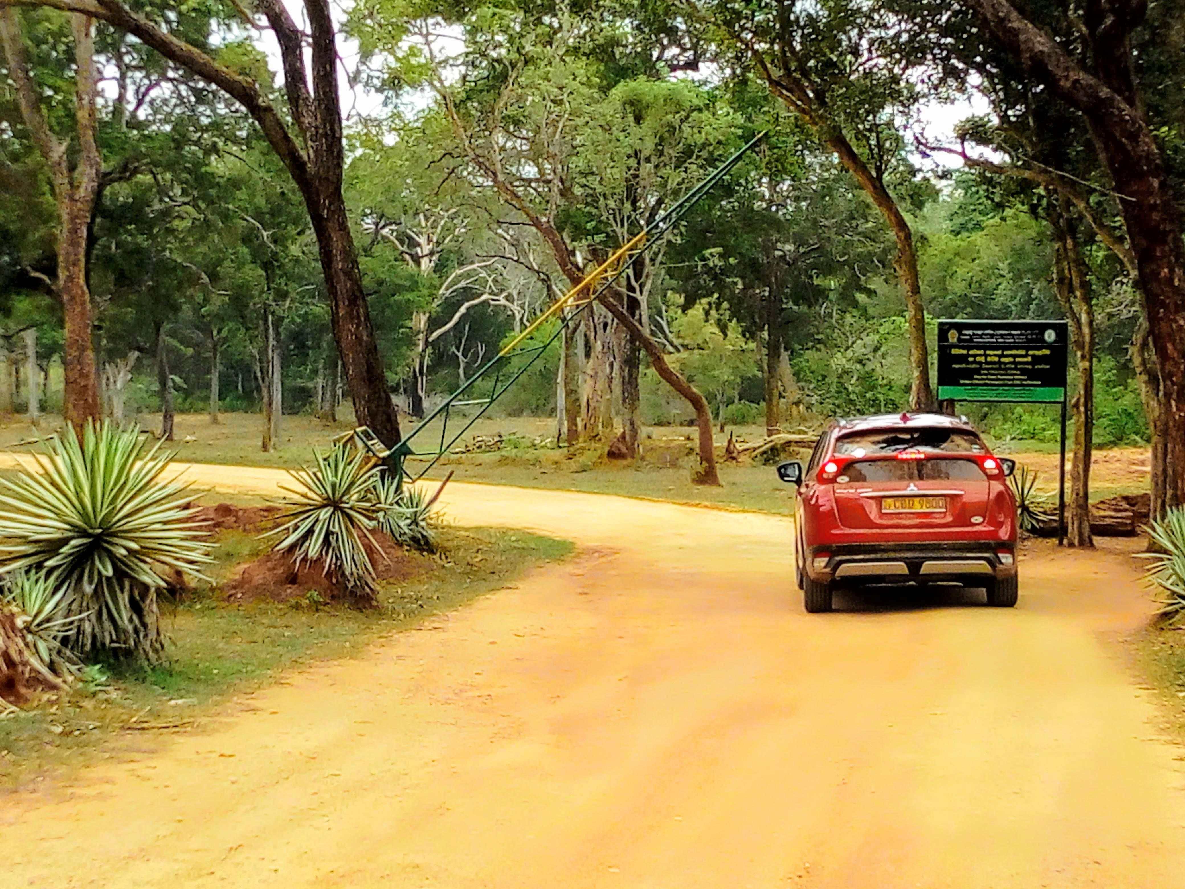 Enter the Udawalawe National Park