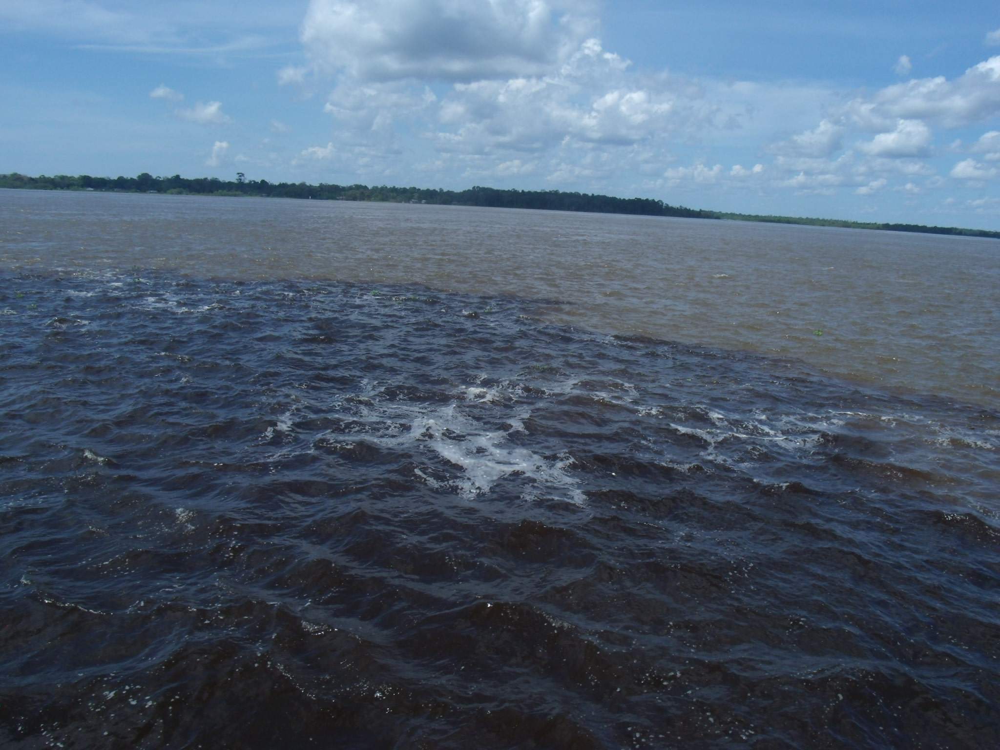 Differently coloured waters of the two rivers
