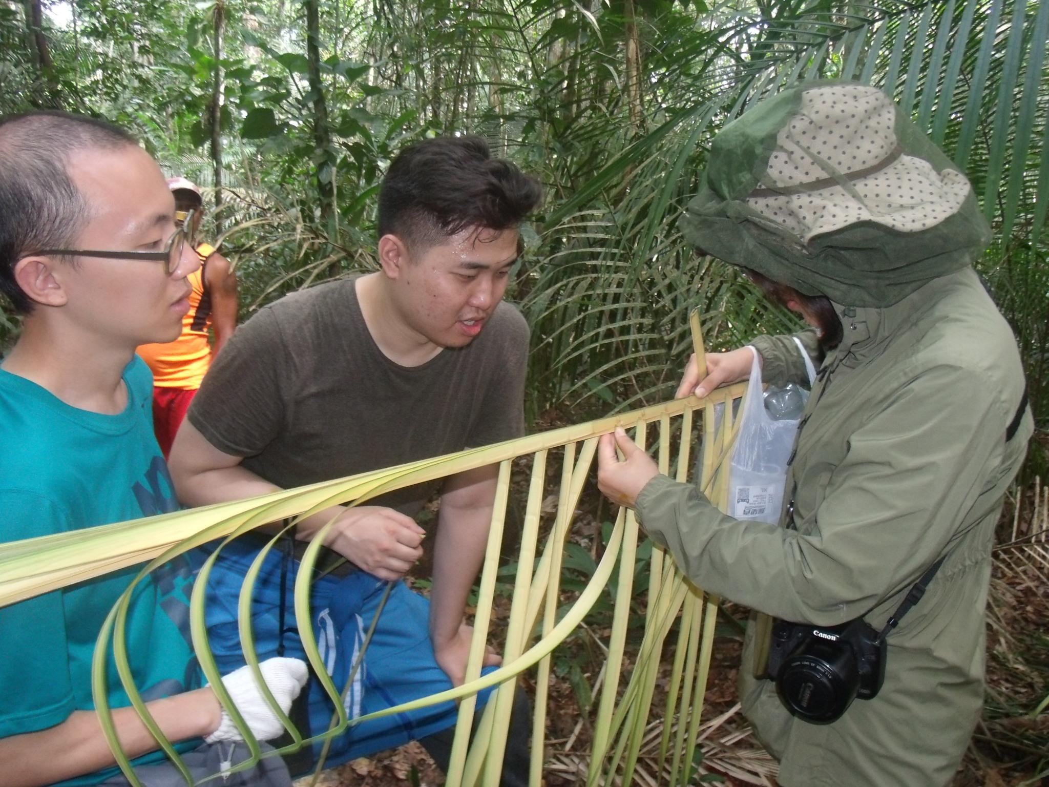 Weaving Palm leaves