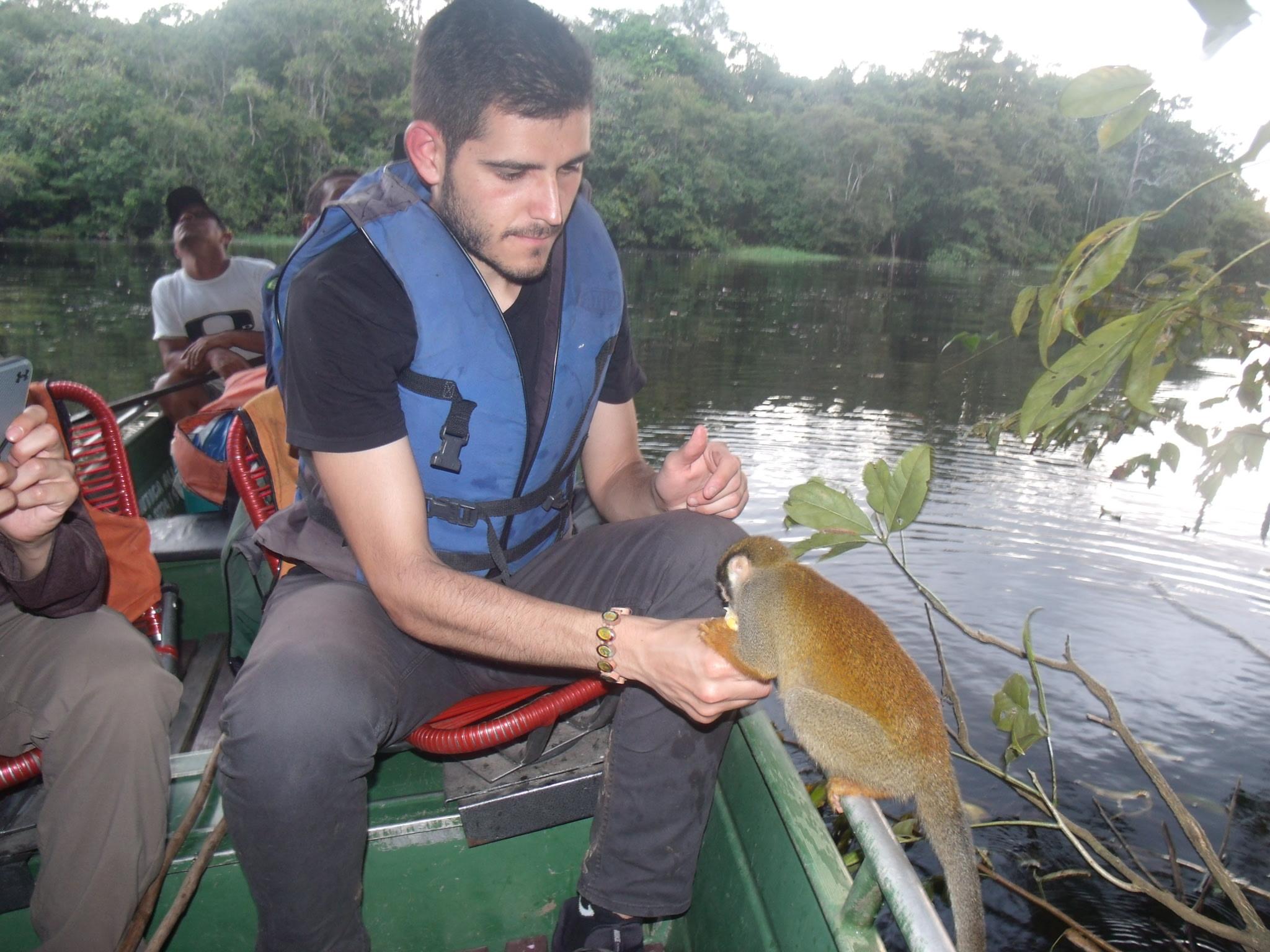 Petting a monkey