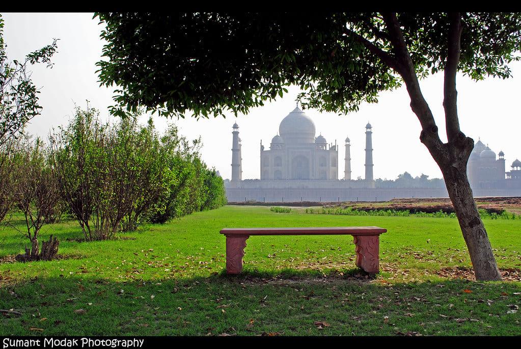Taj from Mehtab Garden