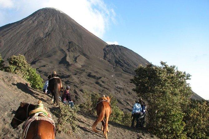 Hike to Volcan de Pacaya