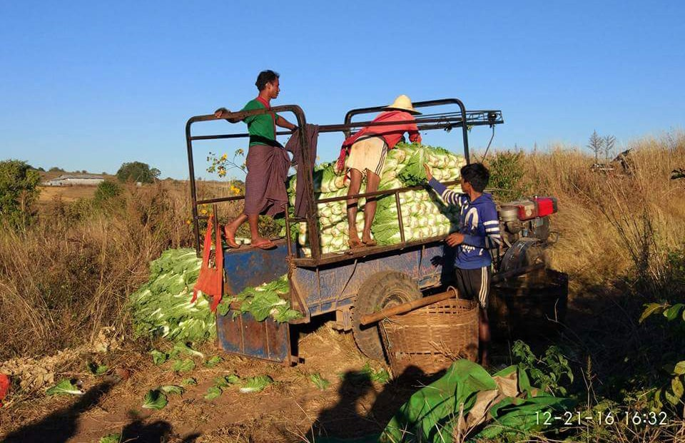 Villagers working in their farms