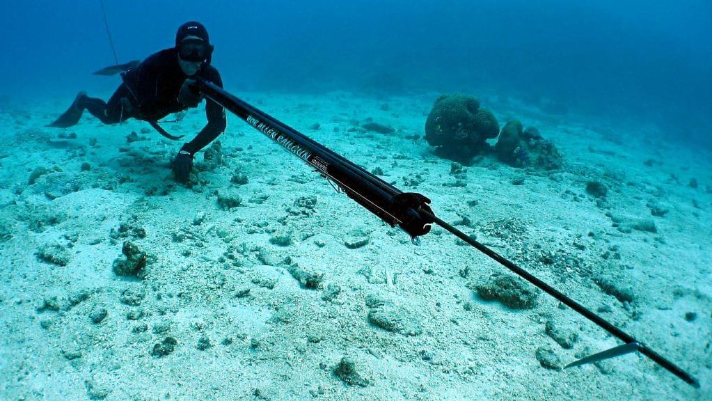 Spearfishing in Cancun