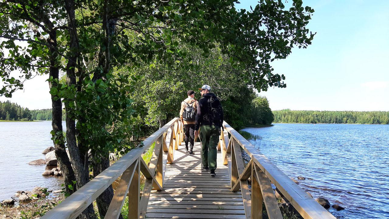 Walk in Liesjärvi National park