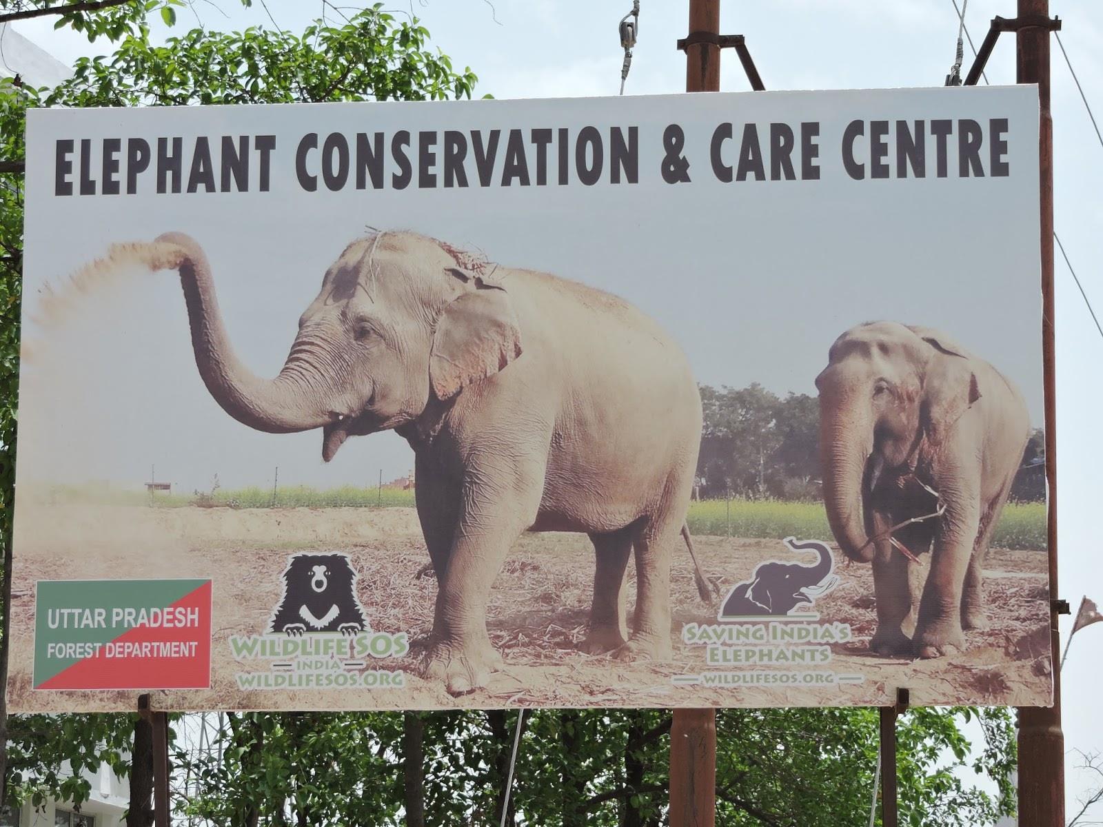 Elephant Conservation, India