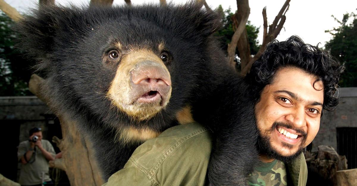 Wildlife SOS Bear Sanctuary, India