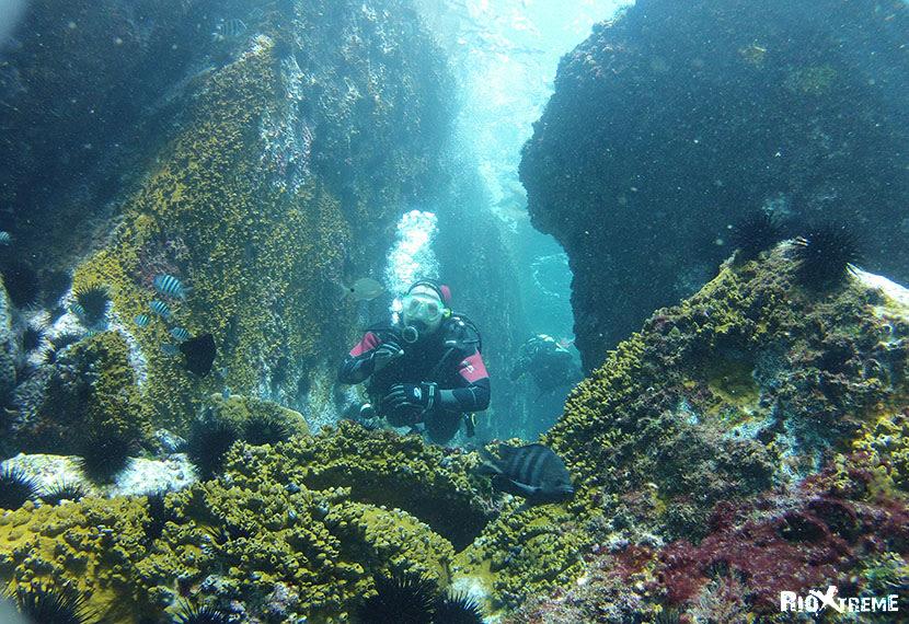 scuba dive for natural wonders