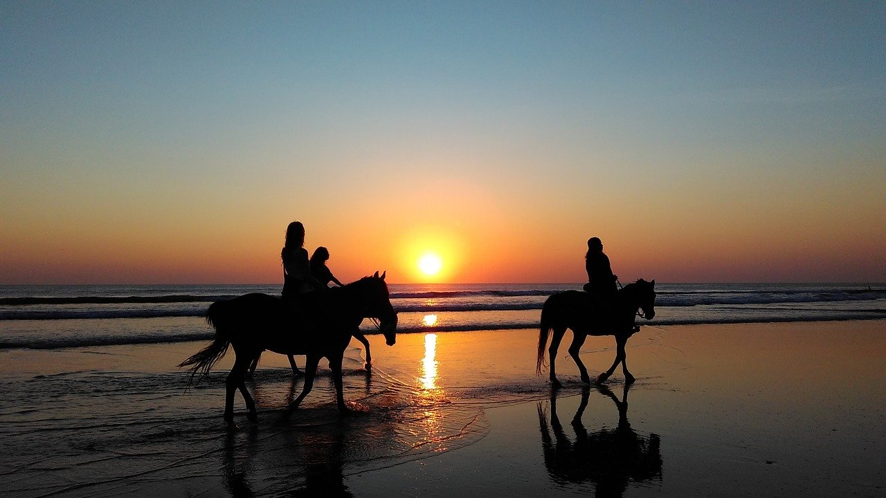 Enjoy horse riding