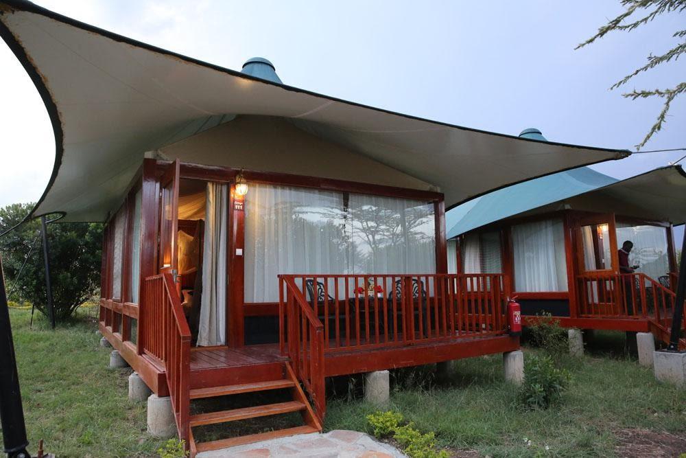 Luxurious Lodge