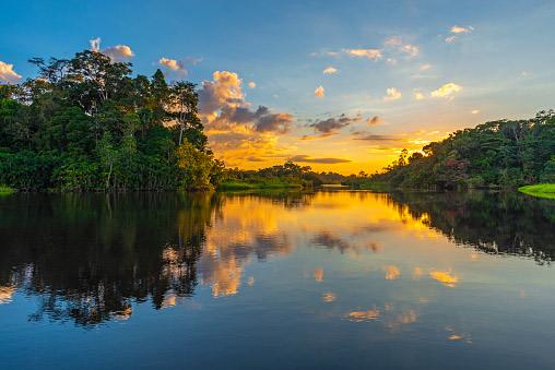 Amazon Yarapa River, Peru