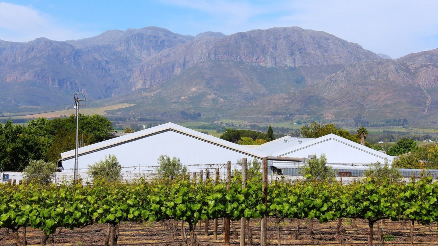 Travel to Cape Winelands