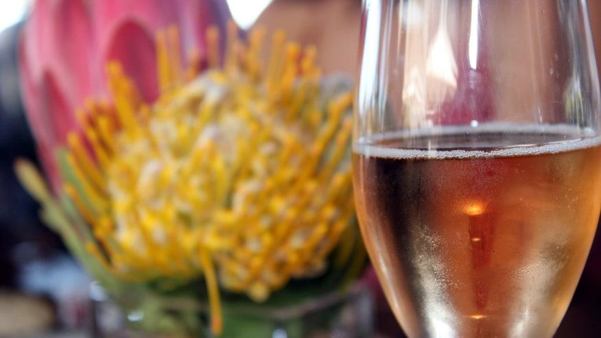Taste sumptuous wine
