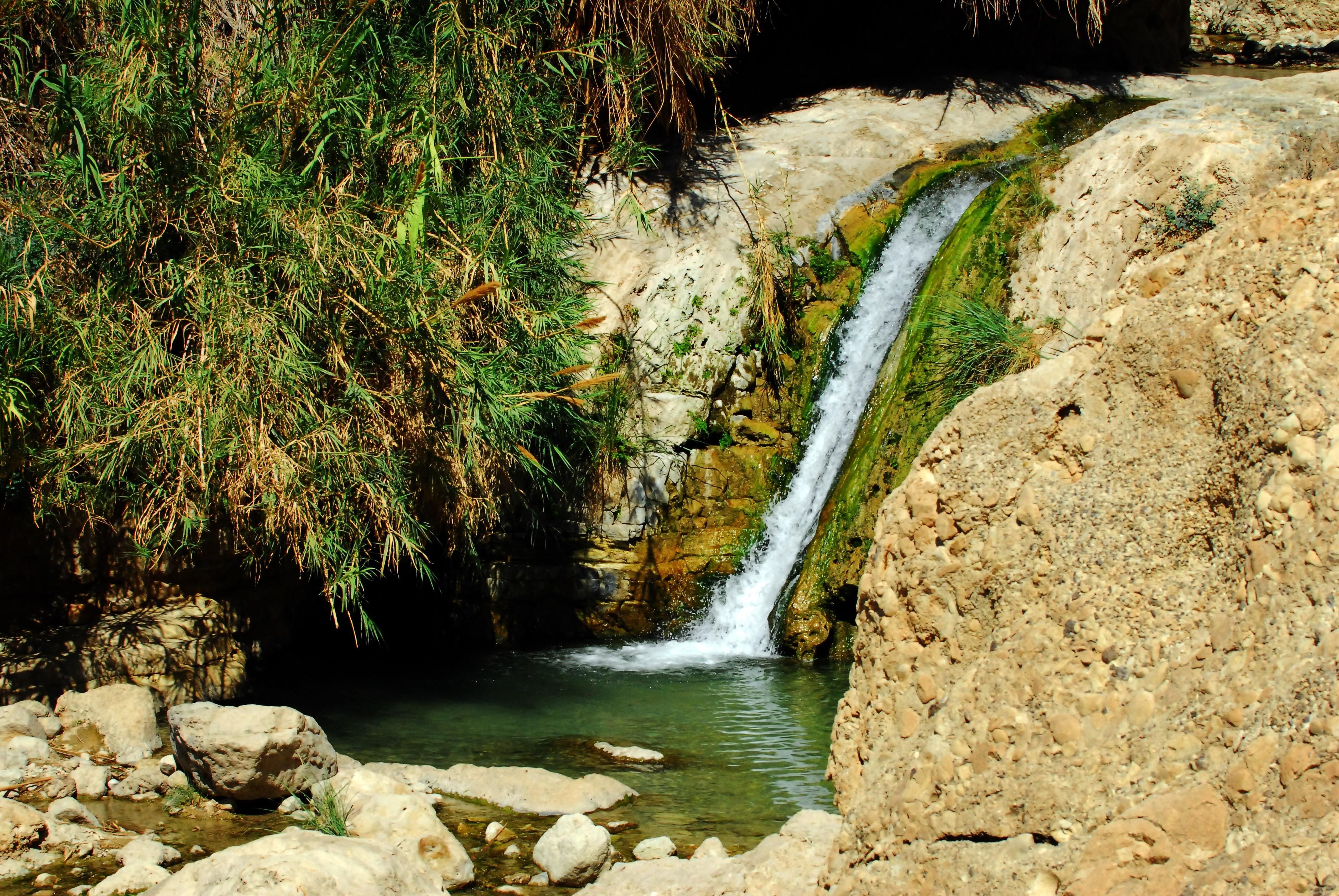 Enigmatic Ein Gedi Springs in Israel