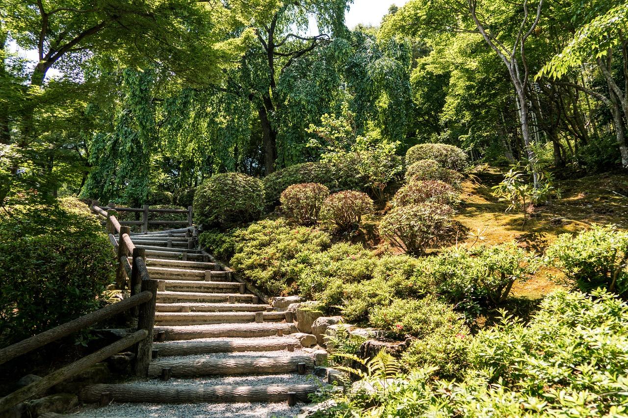 See the Bamboo Garden in Arashiyama