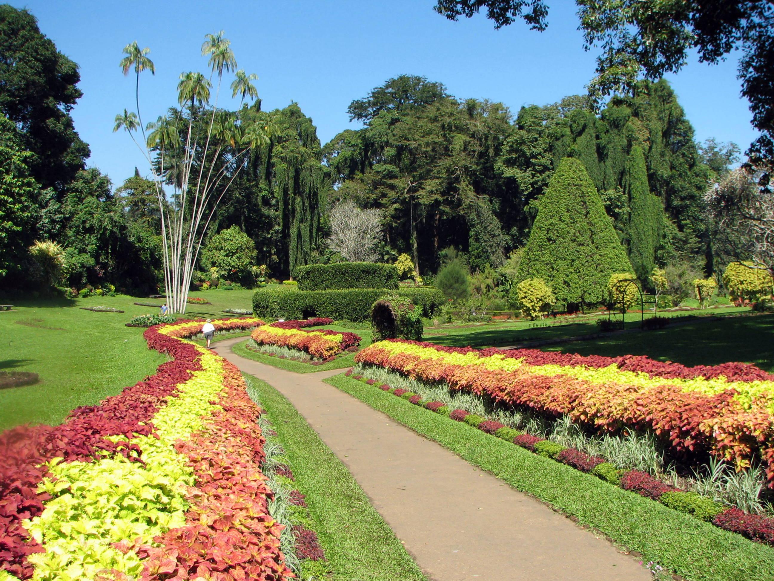 Botanical Garden, Peradeniya