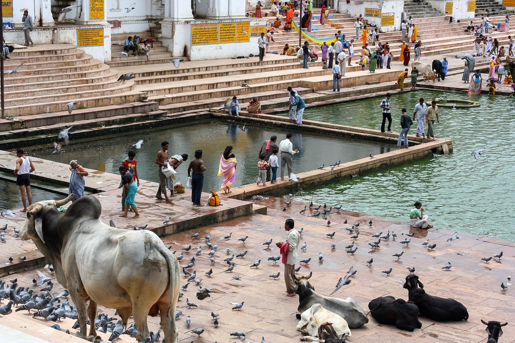 Pushkar Ghat