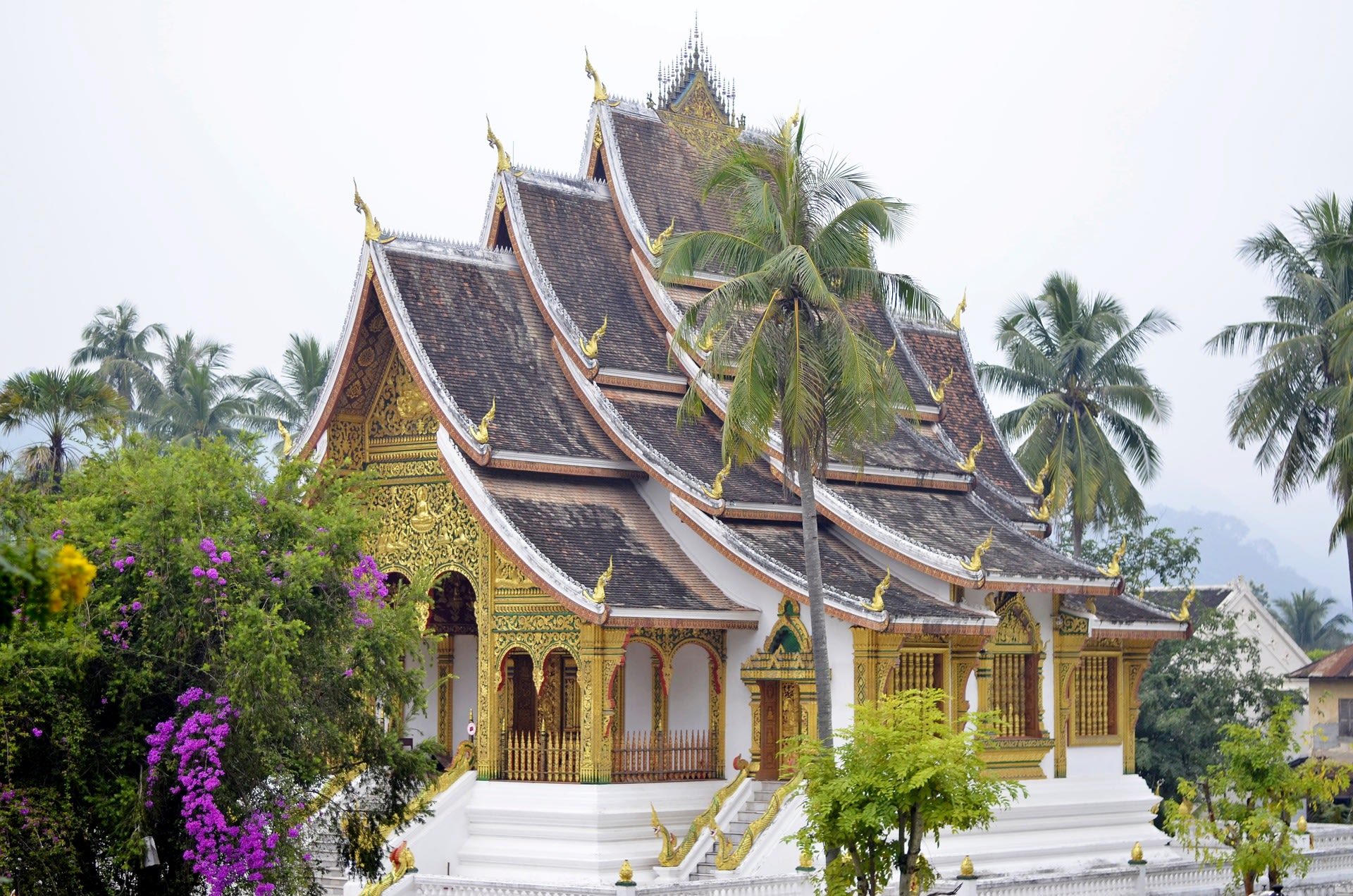 Go to all temples in Luang Prabang