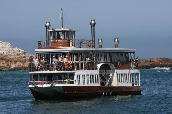 Boating in Knysna Heads