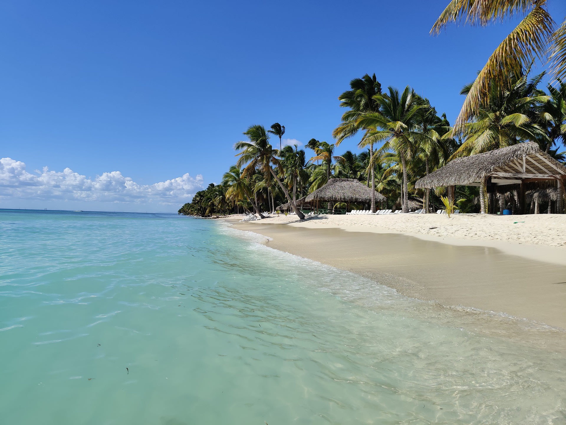 Explore the Saona Island