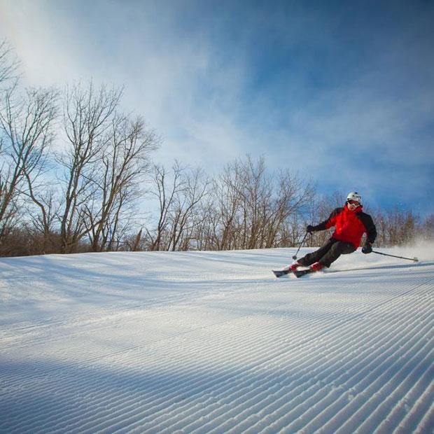 Camp Fortune ski, parc aérien et tyroliennes