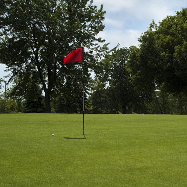 Club de golf Tecumseh