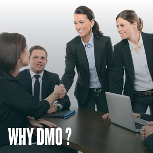 SERVICES PROVIDED BY DESTINATION MARKETING ORGANIZATIONS (DMO)