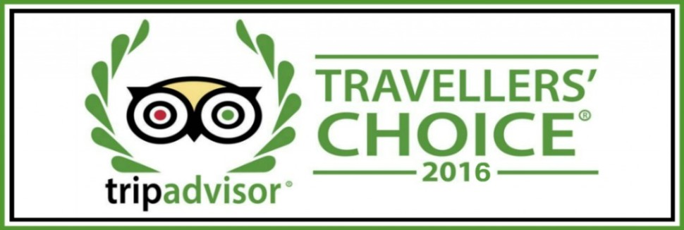 Tips para impulsar sus Rankings y Ratings en TripAdvisor