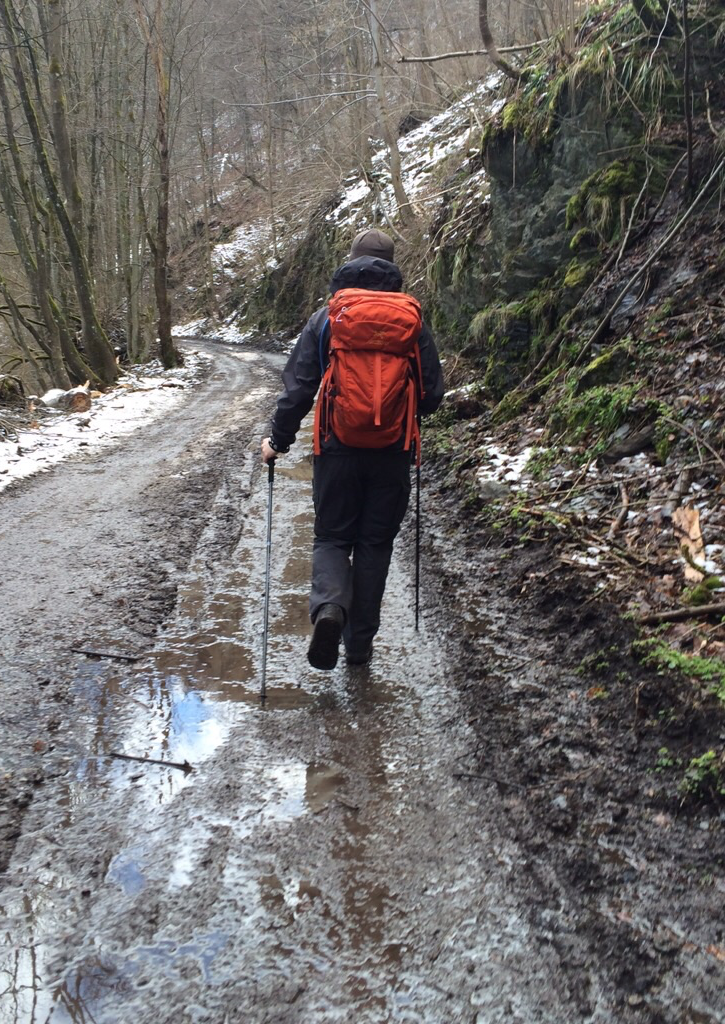 Harz Bodetal Hike - On my way to Altenbrak