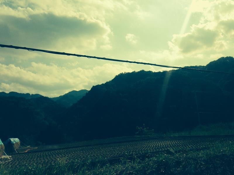 Tokyo to Mt Fuji by Train