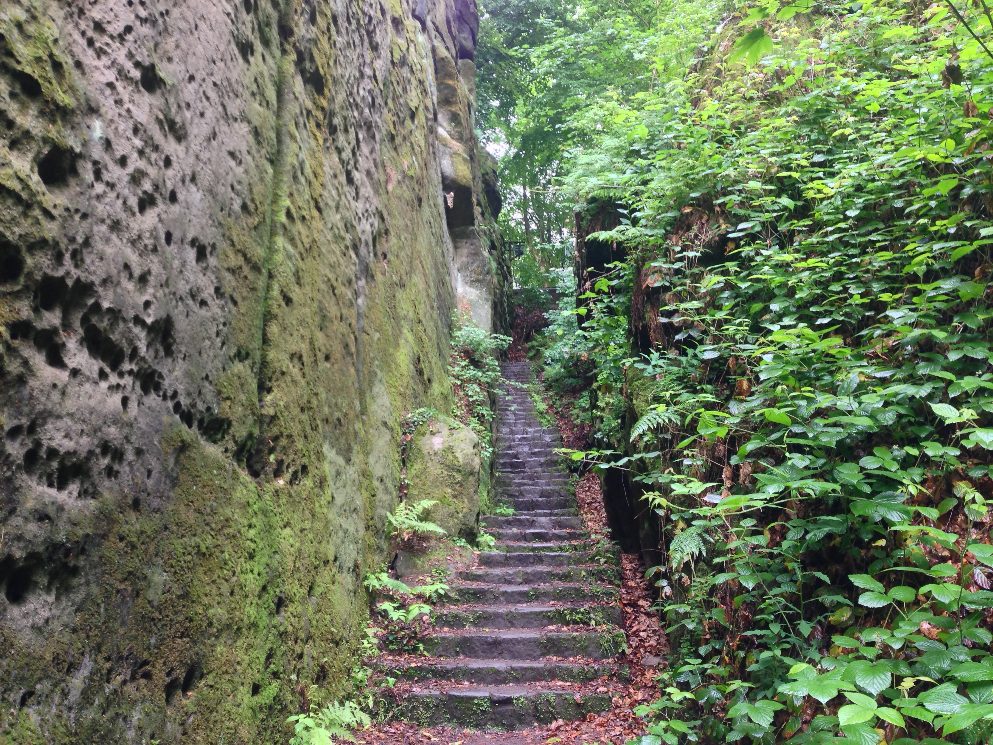 Elbe Sandstone Mountains Hike Malerweg - Ferkelschlüchte and Jungle Stairs