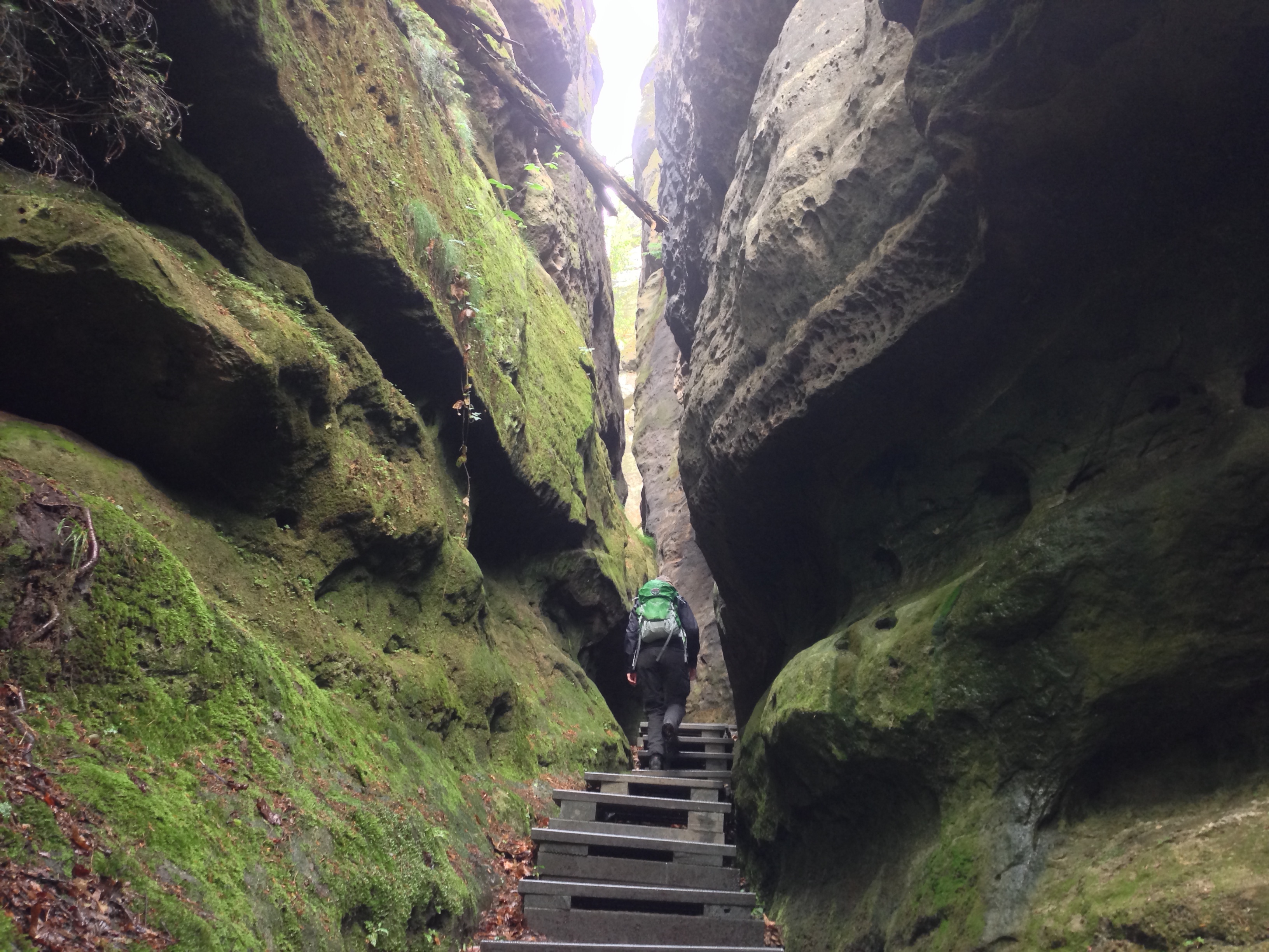 Elbe Sandstone Mountains Hike Malerweg - In the Gorge