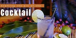 Crafting the Art of the Cocktail in Key West
