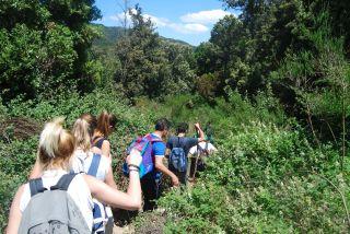 Trekking da Ferdinandea alla cascata del Marmarico.