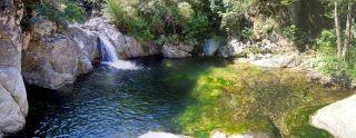 Marmarico (Bivongi); Gurna verde sotto  il pontino