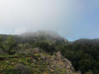 Monte Mammicomito (Placanica)