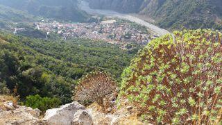Monte Consolino (Stilo); Escursione Monte Consolino e castello normanno di Stilo. Foto Alessandro Valenti